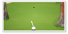 Online game design Active Golf
